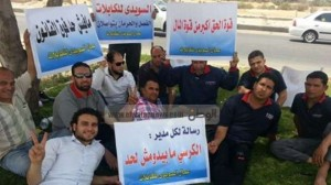 The egyptian constitution does n't protect labors rights in private sector