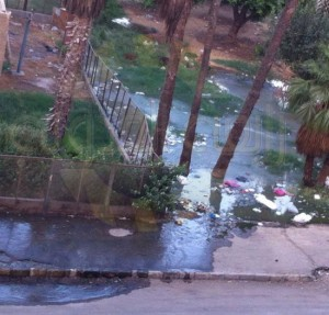 rabaa demonstrators turned the garden to toilets