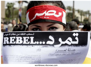 Egyptian Rebel Campaign managed to gather 20 million signatures
