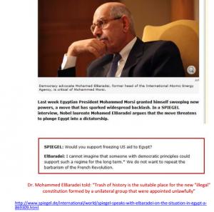 ElBaradei Speaks Out Against Morsi