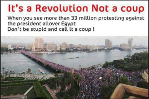what happened in egypt is not a coup