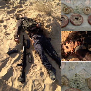 War on terrorism in Sinai 2015