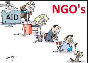 ngos corruption